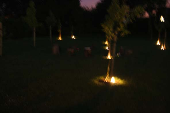 candleorchard